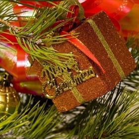 Christmas Decoration_-2592436118056974055