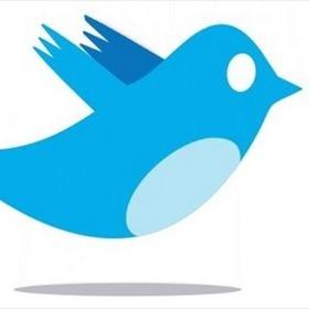Twitter Bird_-1845276942186295892