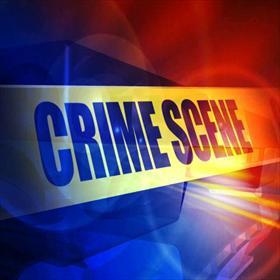 Crime Scene_-2247556978202161244
