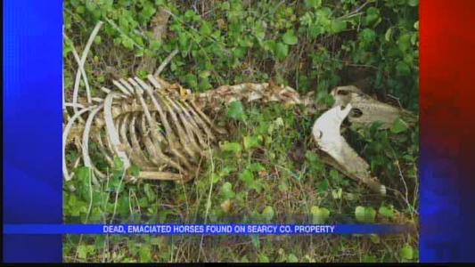 Animal cruelty in Searcy County_-1405848302060682141
