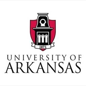 University of Arkansas Logo_-2132220034728704531