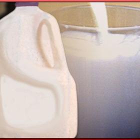 Milk_5061622574379909644