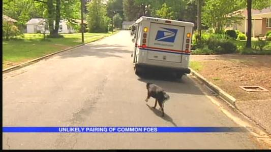 Dog Befriends Mail Carrier In Arkadelphia_338413197282528700