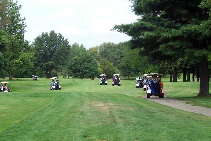 Golf Carts_8962352425520023846