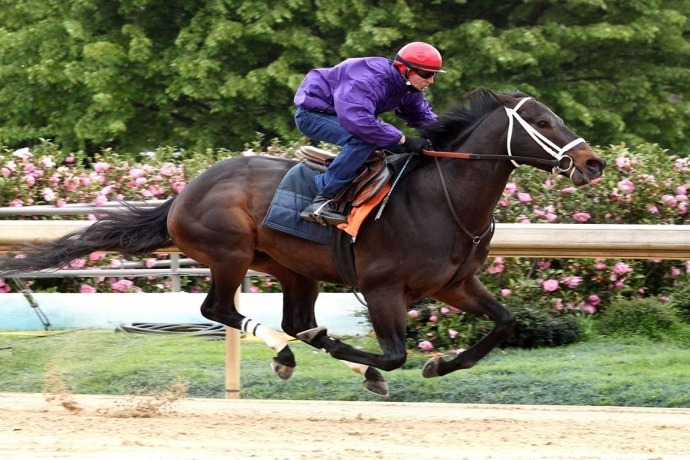 Ride on Curlin April 8 workout_4049888219293958938
