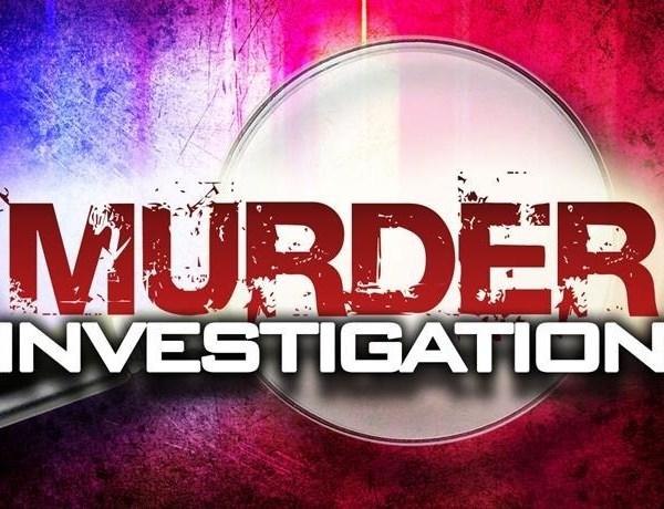 murder _-4600125049483014698