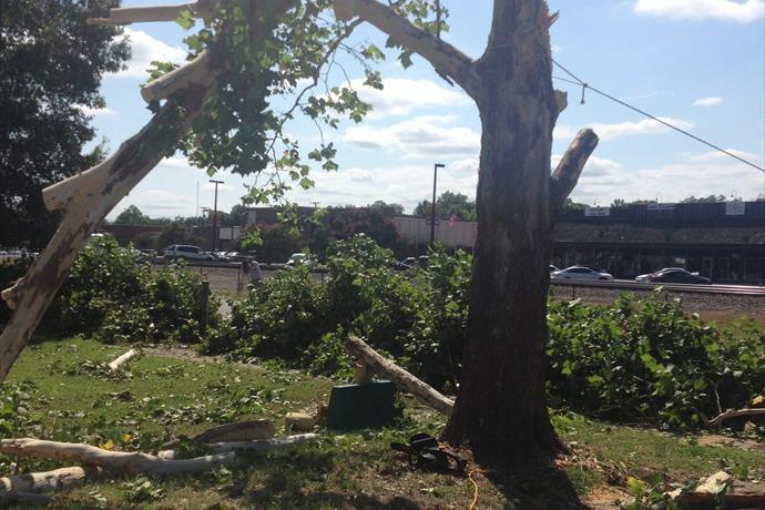 Cabot storm damage_1955773218808874711