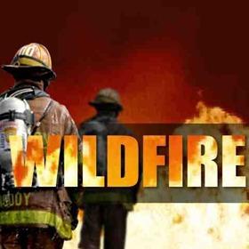 Wildfire_4461387935391106257