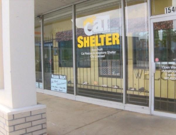 shelter_-8749274651997683215