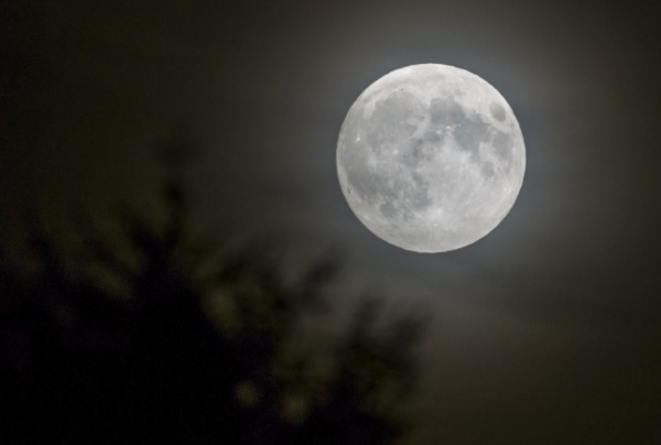 Full Moon_1450989969476.png