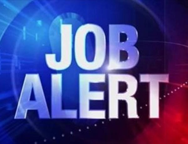 Job Alert image