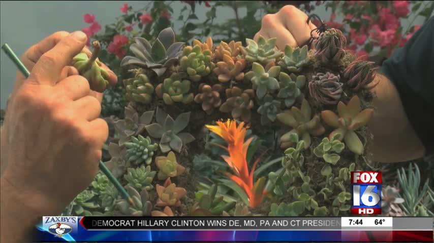 Good Earth Garden Center- Succulents_20160427132403