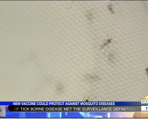 Family Health: Two Cases of Lyme Disease in Arkansas