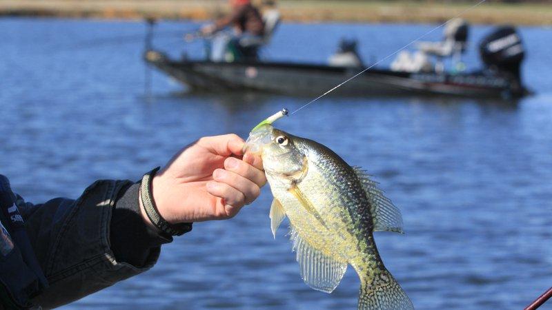 fishing in Arkansas_1521562386725.jpg