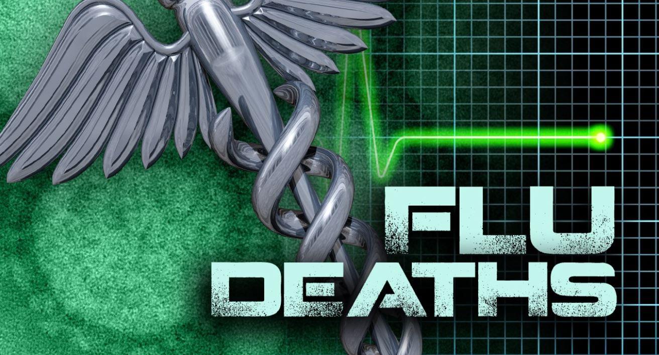 Flu Deaths 1_1554239395901.JPG-118809306.jpg