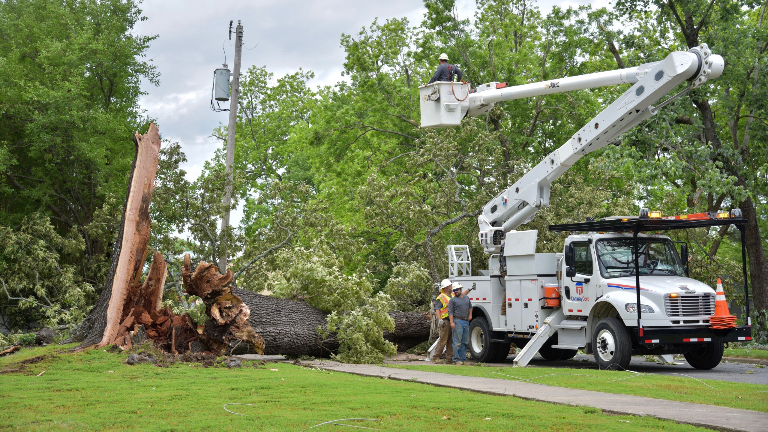 Tree down in Conway_1558472152760.JPG