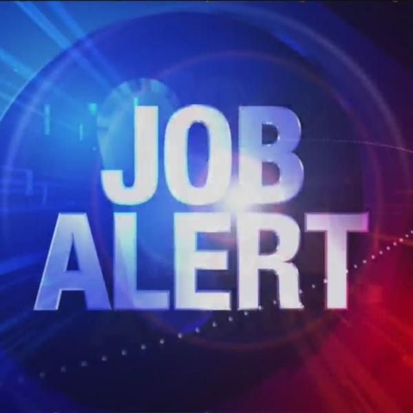 Job_Alert_for_05_23_19_0_20190524024712