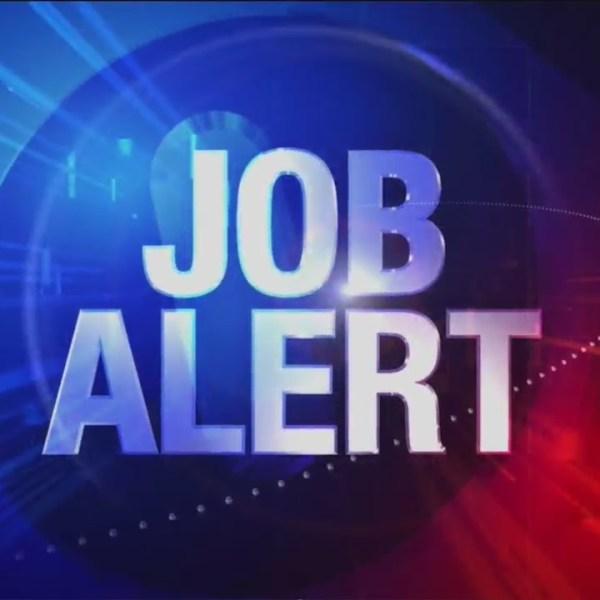Job_Alert_for_06_20_19_0_20190621031344