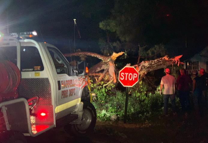 Tree down in Harrell - Calhoun County June 19 - photo by Jacob Cain___1561005332517.PNG.jpg
