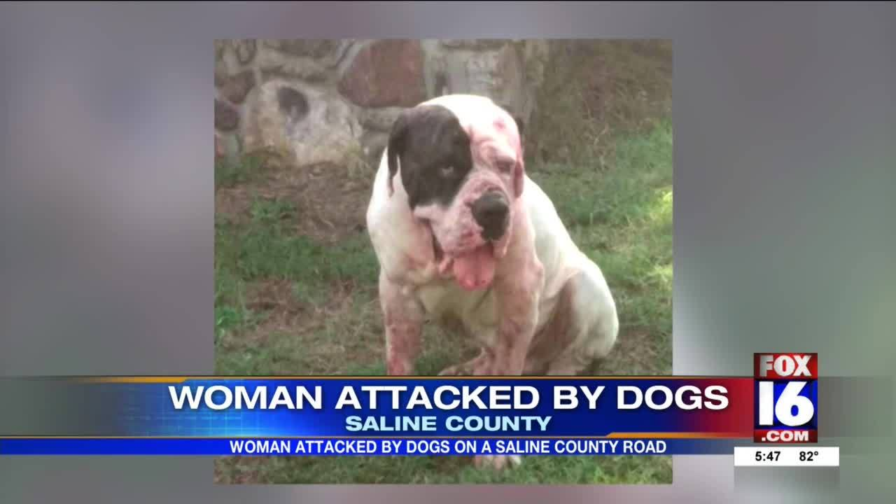 Woman_Attacked_by_Dogs_5_20190624232614