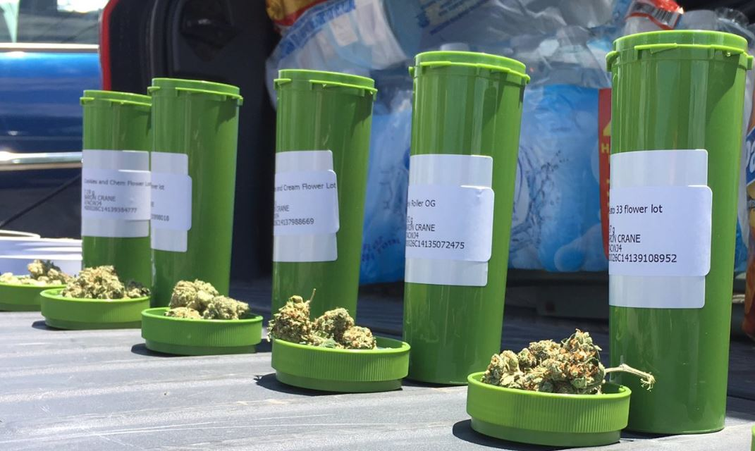 medical marijuana_1558378757348.JPG-118809306.jpg